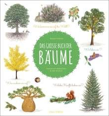 Nathalie Tordjman: Das große Buch der Bäume, Buch