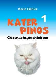 Karin Gähler: Kater Pinos Gutenachtgeschichten, Buch