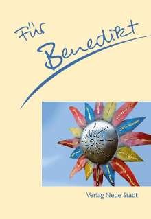 Stephan Schaefer: Für Benedikt, Buch