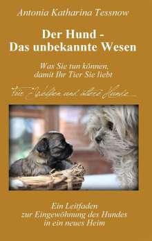 Antonia Katharina Tessnow: Der Hund - Das unbekannte Wesen, Buch