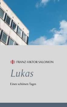 Franz-Viktor Salomon: Lukas - Eines schönen Tages, Buch
