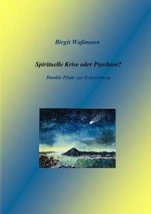 Birgit Waßmann: Spirituelle Krise oder Psychose?, Buch
