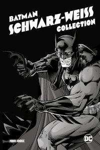 Ted Mckeever: Batman: Schwarz-Weiß Collection (Deluxe Edition), Buch
