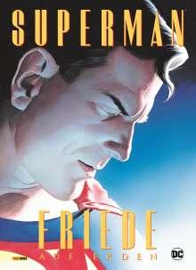 Paul Dini: Superman: Friede auf Erden, Buch