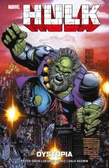 Peter David: Hulk: Dystopia, Buch
