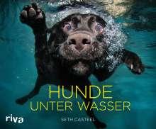 Seth Casteel: Hunde unter Wasser, Buch