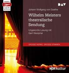 Johann Wolfgang von Goethe: Wilhelm Meisters theatralische Sendung, 2 CDs