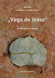 Torge Braemer: Virga de Jesse, Buch