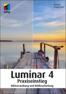 Hendrik Roggemann: Luminar 4 Praxiseinstieg, Buch