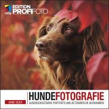 Anne Geier: Hundefotografie, Buch