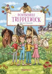 Ellie Mattes: Ponyschule Trippelwick - Meine Freunde, Buch
