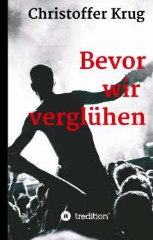 Christoffer Krug: Bevor wir verglühen, Buch