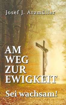 Josef Johann Atzmüller: Am Weg zur Ewigkeit, Buch