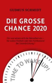 Gudrun Schmidt: Die große Chance 2020, Buch