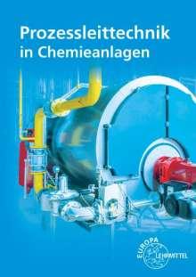 Marina Böckelmann: Prozessleittechnik in Chemieanlagen, Buch