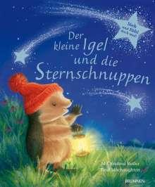 M Christina Butler: Der kleine Igel und die Sternschnuppen, Buch