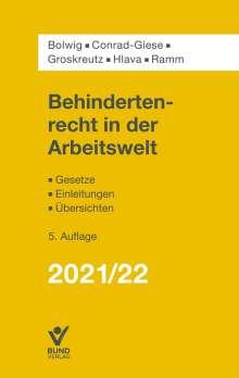 Nils Bolwig: Behindertenrecht in der Arbeitswelt, Buch