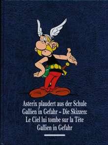 Albert Uderzo: Asterix Gesamtausgabe 12, Buch