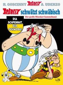 Albert Uderzo: Asterix schwätzt schwäbisch, Buch