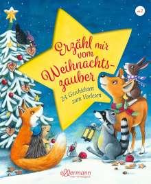 Anne Ameling: Erzähl mir vom Weihnachtszauber, Buch