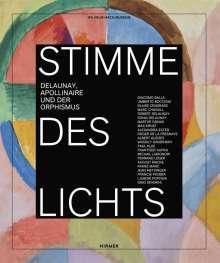 Stimme des Lichts, Buch