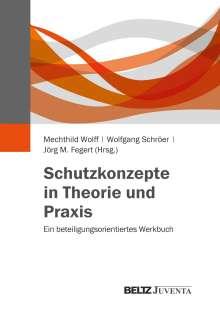 Schutzkonzepte in Theorie und Praxis, Buch