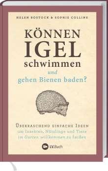 Helen Bostock: Können Igel schwimmen und gehen Bienen baden?, Buch