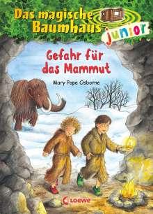 Mary Pope Osborne: Das magische Baumhaus junior 07- Gefahr für das Mammut, Buch