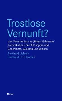 Burkhard Liebsch: Trostlose Vernunft?, Buch