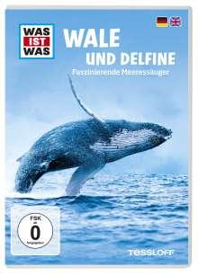 Was ist was: Wale und Delphine, DVD