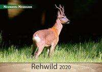 Rehwild 2020, Diverse