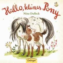 Nina Dulleck: Hallo, kleines Pony!, Buch