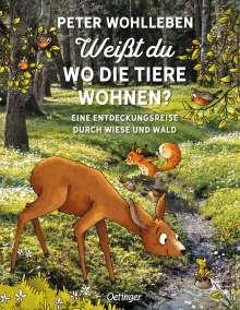 Peter Wohlleben: Weißt du, wo die Tiere wohnen?, Buch
