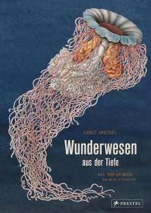 Maike Biederstädt: Wunderwesen aus der Tiefe. Ernst Haeckel, Buch