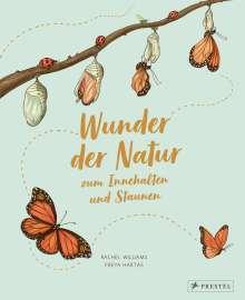 Rachel Williams: Wunder der Natur zum Innehalten und Staunen, Buch