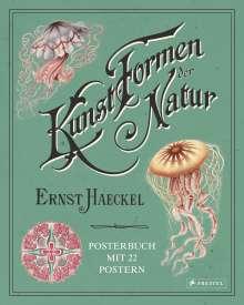 Kira Uthoff: Ernst Haeckel: Kunstformen der Natur. Posterbuch mit 22 Postern, Buch