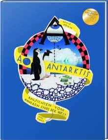 Böhm David: A wie Antarktis, Buch