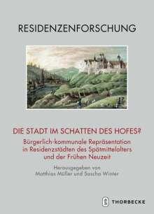 Die Stadt im Schatten des Hofes?, Buch