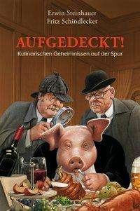 Erwin Steinhauer: Aufgedeckt!, Buch