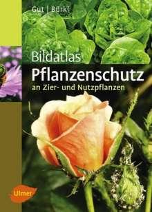 Philipp Gut: Bildatlas Pflanzenschutz an Zier- und Nutzpflanzen, Buch