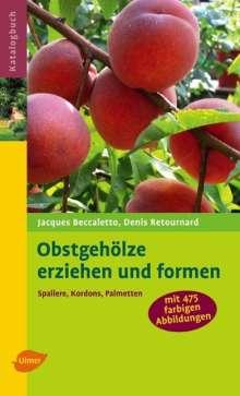 Jacques Beccaletto: Obstgehölze erziehen und formen, Buch