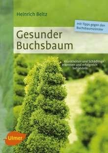Heinrich Beltz: Gesunder Buchsbaum, Buch
