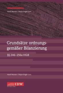 Dejan Engel-Ciric: Grundsätze ordnungsgemäßer Bilanzierung, Buch