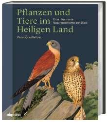 Peter Goodfellow: Pflanzen und Tiere im Heiligen  Land, Buch