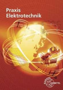 Peter Braukhoff: Praxis Elektrotechnik, Buch