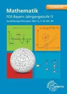 Josef Dillinger: Mathematik FOS/BOS Bayern Jahrgangsstufe 11, Buch