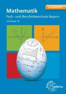 Josef Dillinger: Mathematik Fach- und Berufsoberschule Bayern, Buch