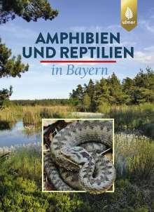 Eberhard Andrä: Amphibien und Reptilien in Bayern, Buch