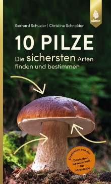 Gerhard Schuster: 10 Pilze, Buch