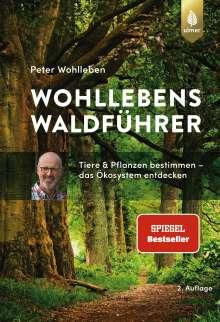 Peter Wohlleben: Wohllebens Waldführer, Buch